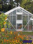 Kleingewächshaus im Herbst-Garten